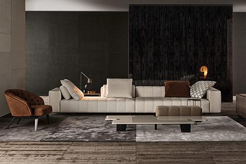 living room featuring minotti freeman sofa