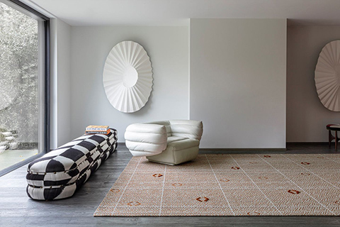 sparse modern living room featuring a limited edition rug
