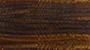 Glossy Frisé Eucalypt - 0498E