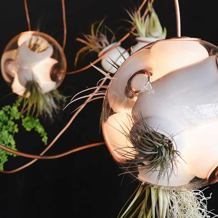 cluster of bocci 38 series copper pendant lights with air plants
