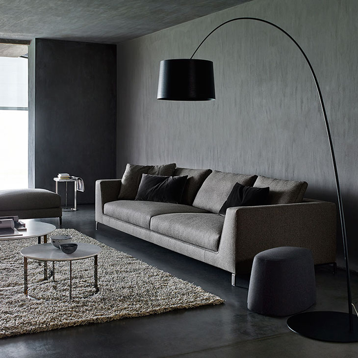 modern living room featuring b&b italia ray sofa